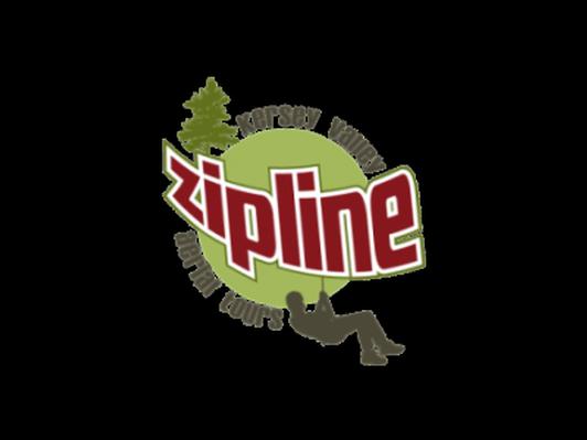 Aerial Zip Line Eco-Tour Adventure