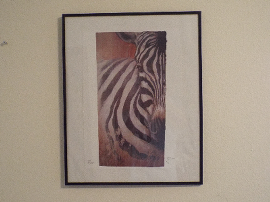Zebra Standard Print signed by David Small