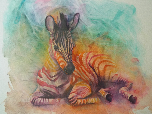 Zebra Signed Professional Print by Angela Casey