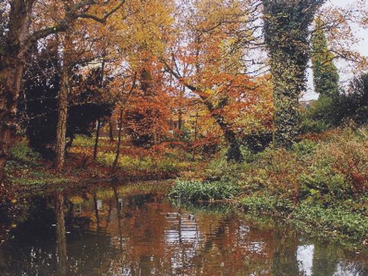 Autumn at Uni