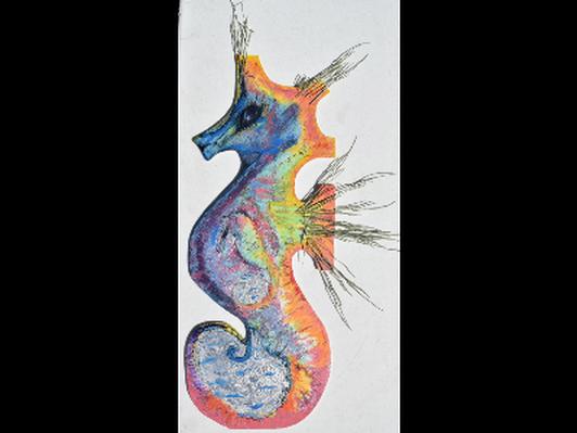 Hippocampus & Fry