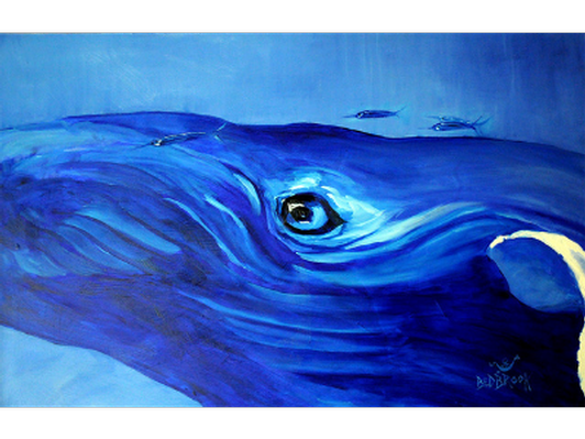 The eye of the whale - L'oeil de la baleine