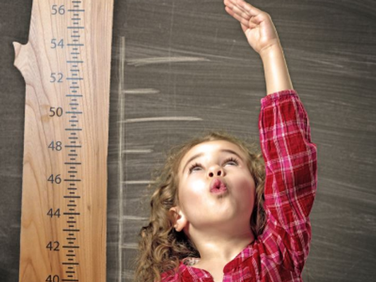 Wooden Child's Growth Chart - made by Wood from the Hood