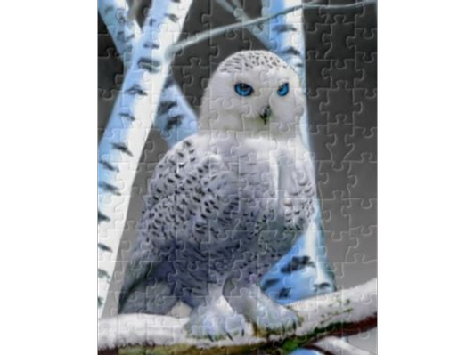 Blue-Eyed Owl in Birches Jigsaw Puzzle