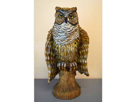 The Owl of Athol