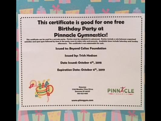Pinnacle Gymnastics -1.5 HR Birthday Party