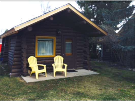 Red Lodge Getaway-Cabin, food, and movies!
