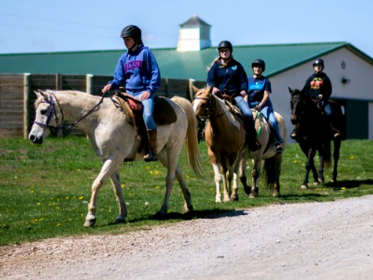 Trail Ride for up to 4 people