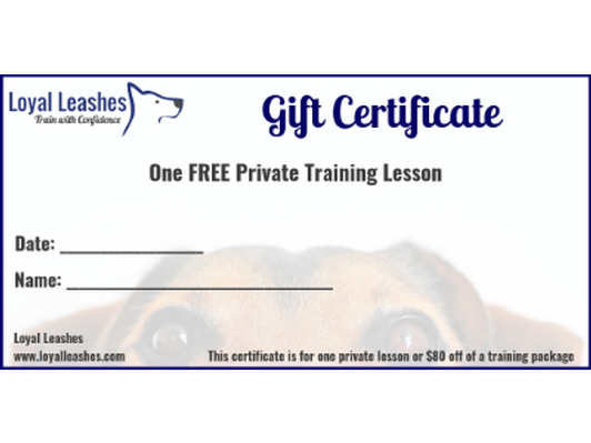 One free private training lesson with Loyal Leashes Dog Training