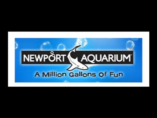 Newport Aquarium Package