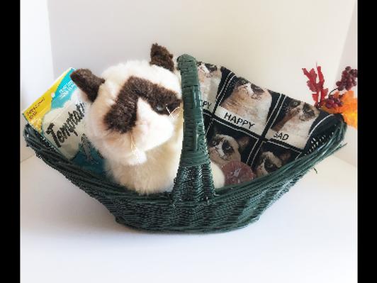 Grumpy Cat Basket