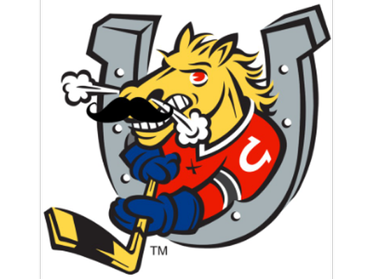 Barrie Colts Hockey Box