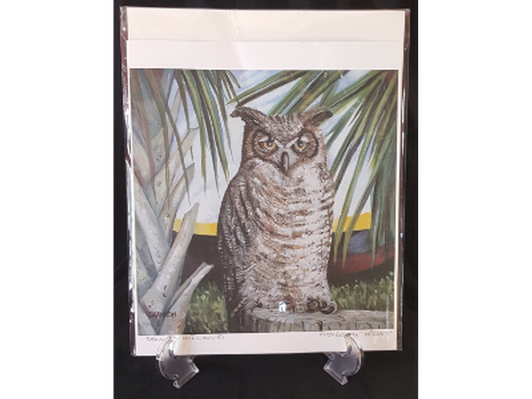 Wizard Great Horned Owl
