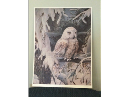 Owl Painting by local artist