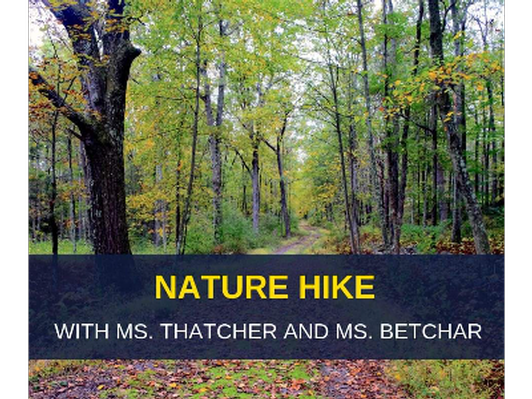 Nature Hike for 4