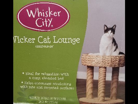 Whisker City