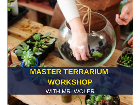 Master terrarium workshop for 10