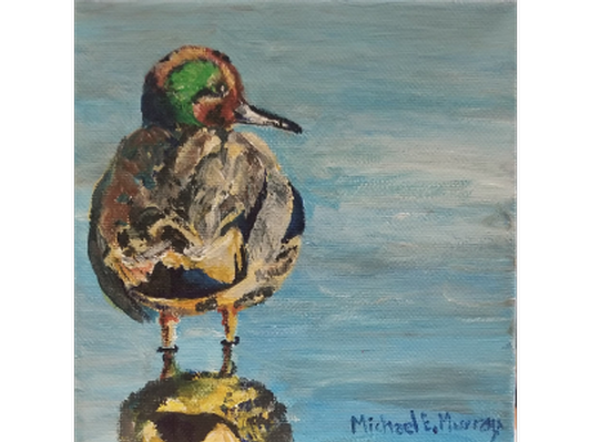Green Winged Teal by Michael Murray