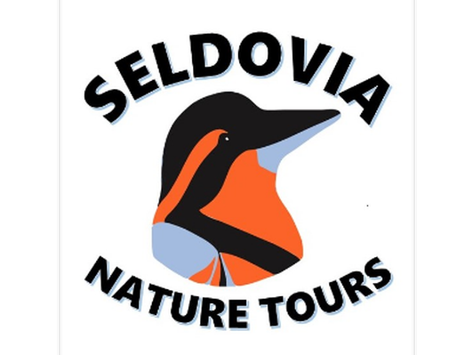 Two hour guided birding trip for two, with Seldovia Nature Tours.