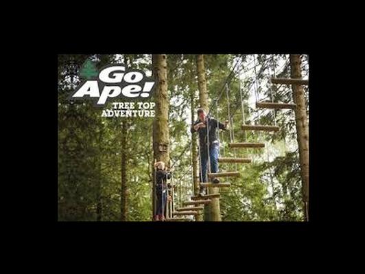 Go Ape Treetop Adventure Gift Certificate