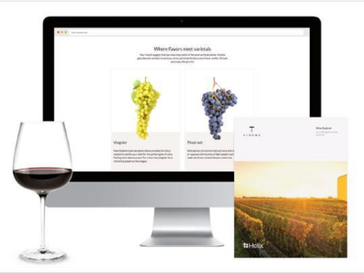 DNA-Test-Kit GUIDE TO WINES