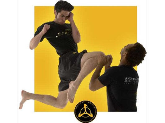 1hr Private Lesson in Jeet Kune Do and Filipino Martial Arts