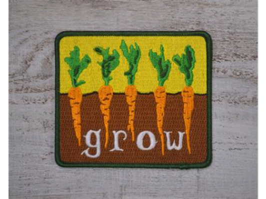 Grow Carrots Patch