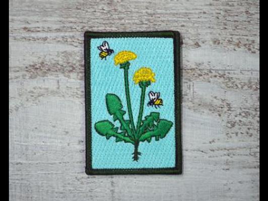 HoneyBee and Dandelion Patch