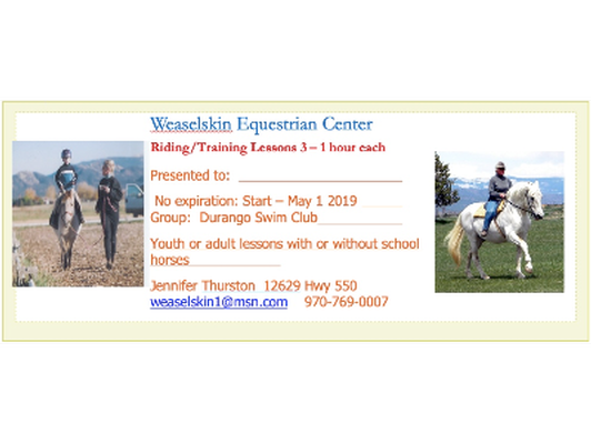 Weaselskin Equestrian Center-3 One Hour Training/Riding Lessons