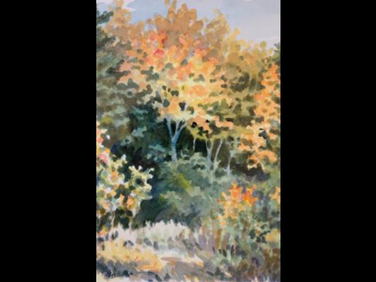 Light on Fall Leaves by Nancy Glassman