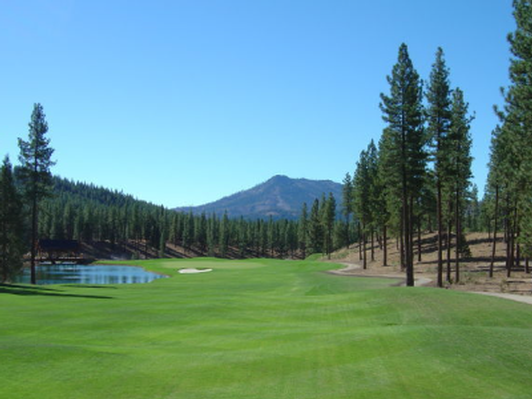 Golf for Four at Grizzly Ranch Golf Club