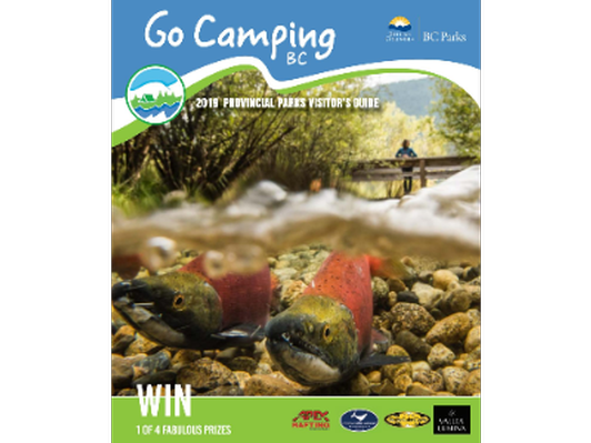 Get a 1/8 page advertisement in the Go Camping BC Guide 2020