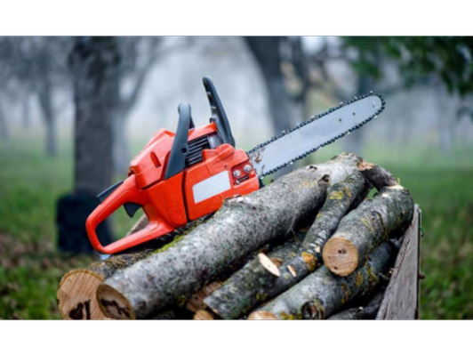 2-1/2 (real) Hours of Chainsaw Work