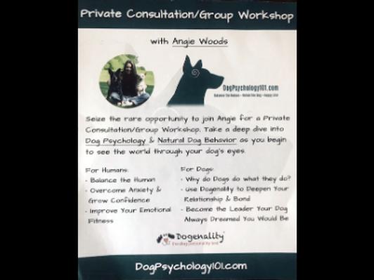 Dog Psychology 101 Consult/Workshop
