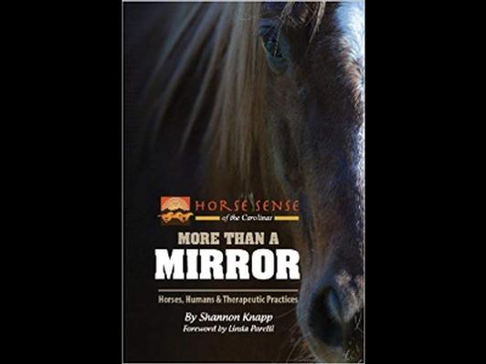 More Than a Mirror - book