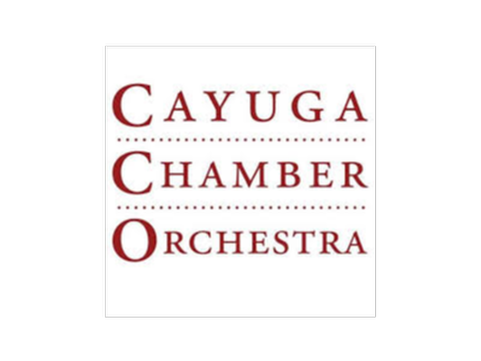 Family 4-Pack to Cayuga Chamber Orchestra