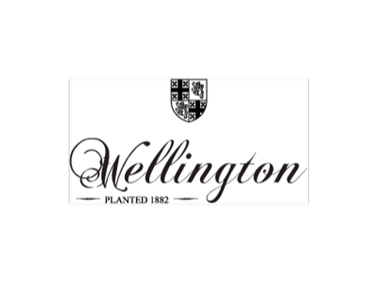 VIP Seated Tasting for Four Guests at Wellington Cellars