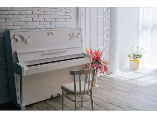 Music Lovers' House Tour