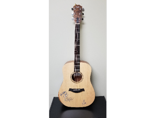 2020 Alive at the Bluebird concert series Autographed Taylor Acadamy 10e Guitar