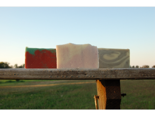 $50 Gift Certificate for Wyldewood Soap