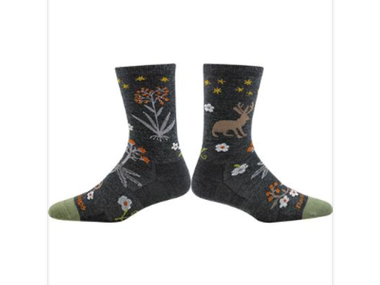 One Pair of Darn Tough Socks!