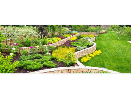 Landscaping Consultation by PV's Best Ric Dykzeul