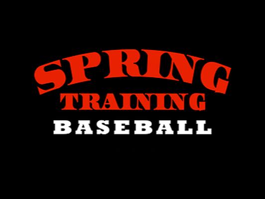 1 Week of Dan Springs Baseball Camp