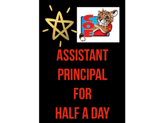 Assistant Principal for Half a Day
