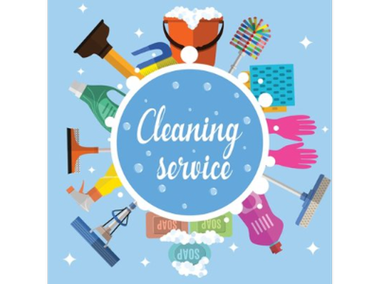 Cleaning Service by the Star Shine Grammy!