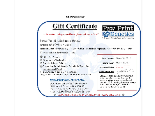 Boykin Panel (1) and Supplement Panel - Gift Certificate $260
