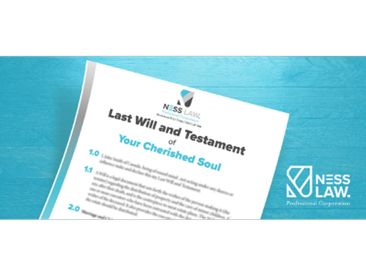 Individual Will & Testament, Power of Attorneys