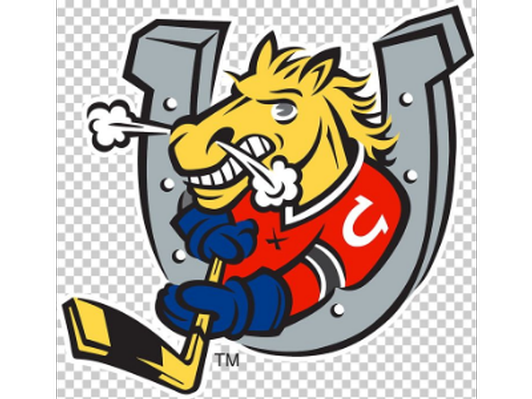 $200 Barrie Colts Gift Card