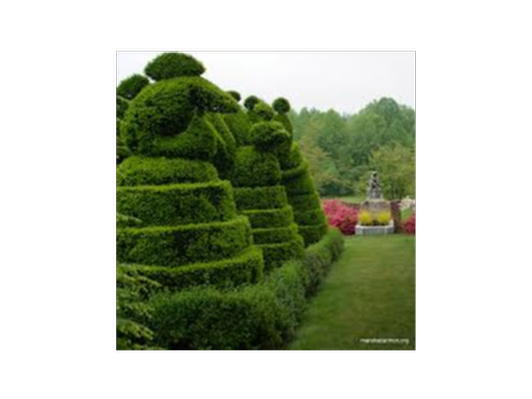 Topiaries and Temptations