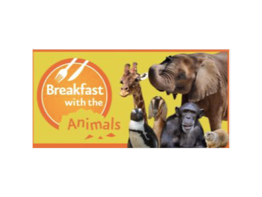 Breakfast with the Animals